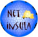 Netinsula